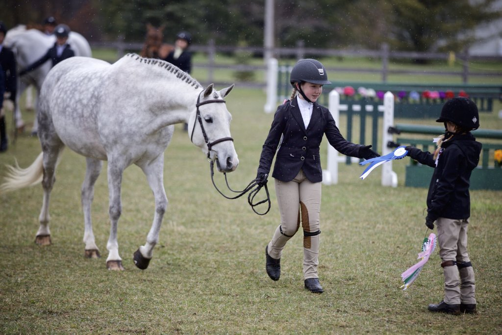 Bronze Equestrian Competition Ottawa Wesley Clover Parks