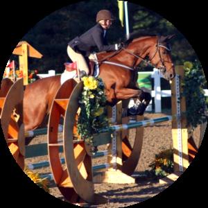 Robin Brock WCP Equestrian Team Instructor Wesley Clover Parks