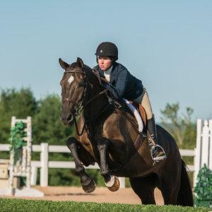 Horse Tux